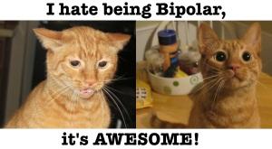 bipolar-orwell