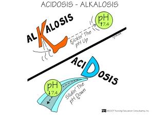 Acidosis - Alkalosis